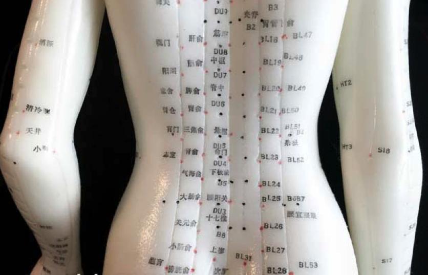 Guia de pontos de acupuntura