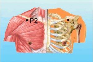 localizacao-p2-acupuntura