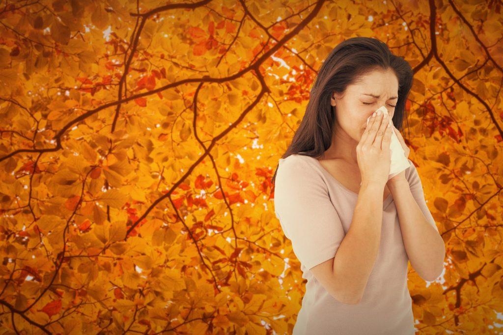 sisitema imunológico e a ansiedade