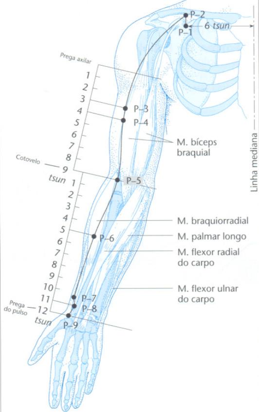 Ponto de acupuntura P5