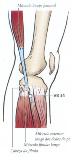 VB34 acupuntura Localização