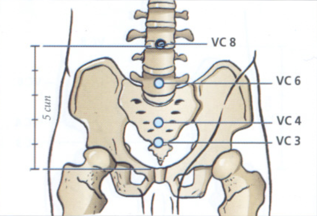 VC4 acupuntura sua Localização