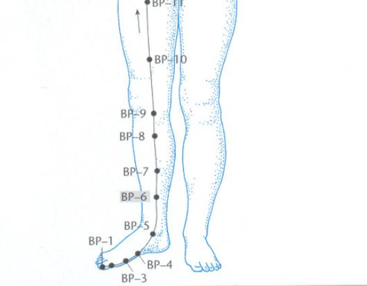 BP6 acupuntura Claudia