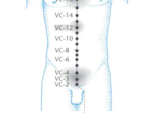 vc12 acupuntura Claudia Focks