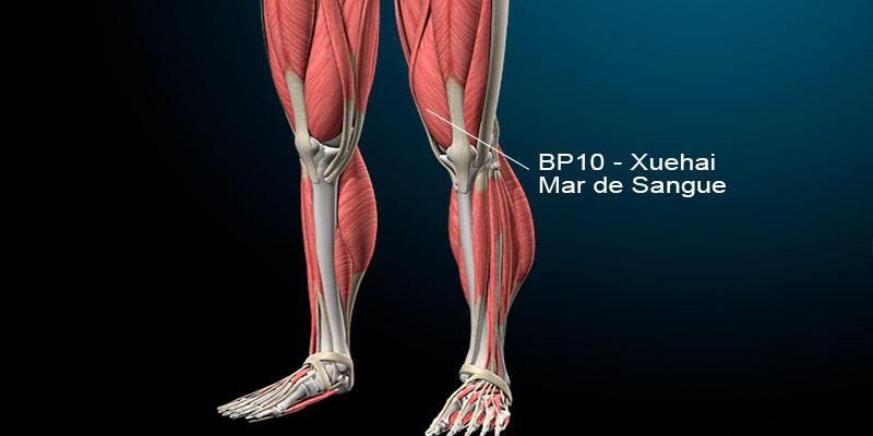 BP10 acupuntura