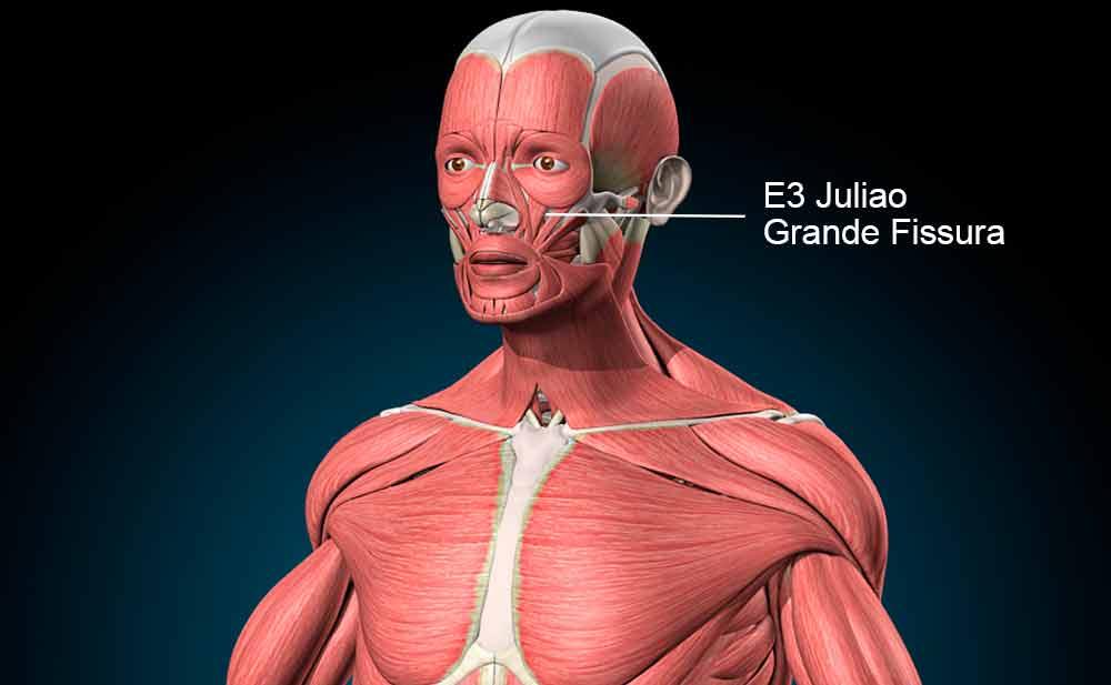 E3 acupuntura