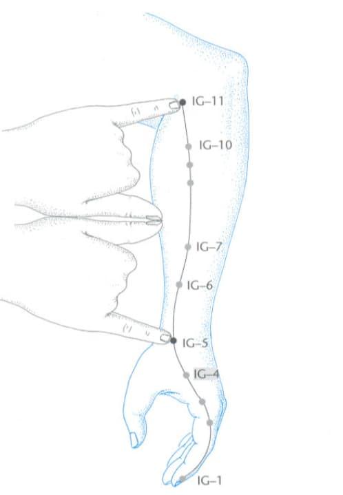 G4 Hegu ponto acupuntura