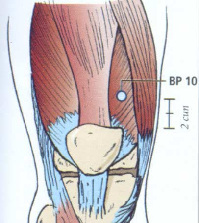 Ponto de acupuntura BP10