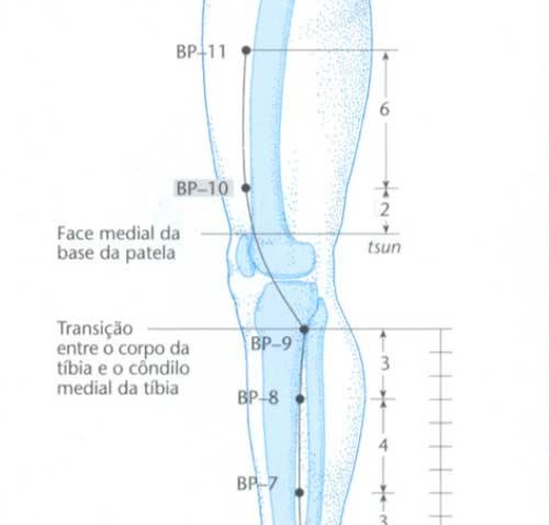 bp10 acupuntura localizacao