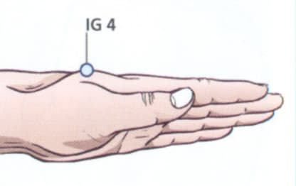 Ponto IG4 Acupuntura