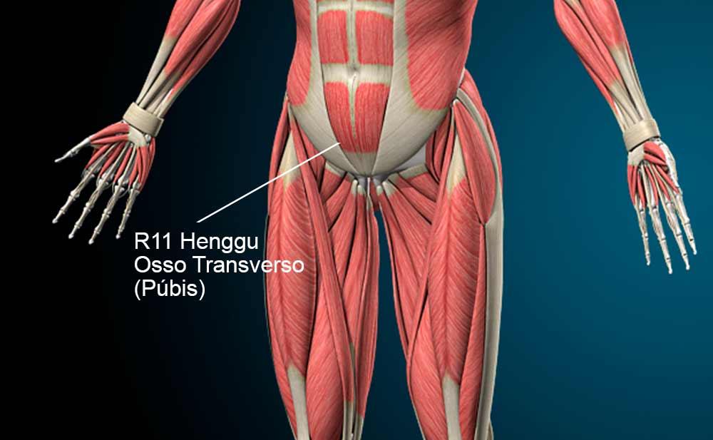 R11 acupuntura