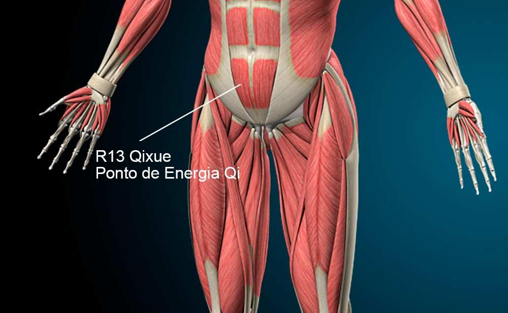 R13 acupuntura